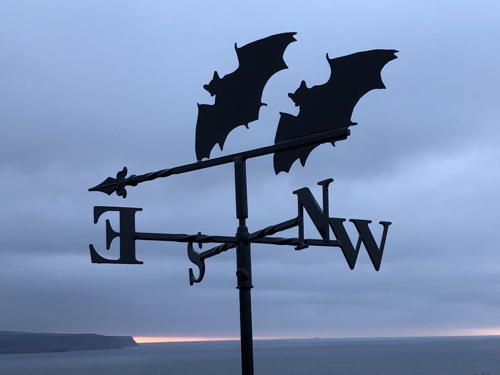 Bats-Weathervane