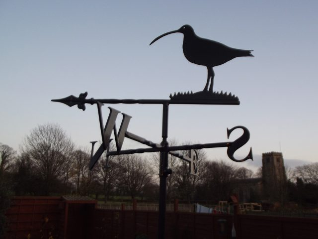 Curlew Weathervane
