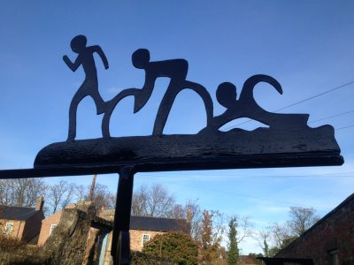 Triathlon Weathervane